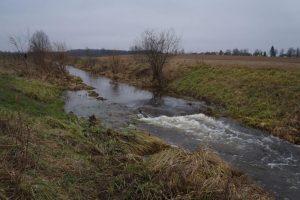 Prievarta ištiesintos upės turėtų vėl vingiuoti