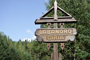 Miškų urėdas: kirsti mišką Labanoro girioje nedraudžiama