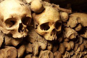 Tvarkant seną LRT sandėliuką rasta žmogaus kaukolė ir kaulas
