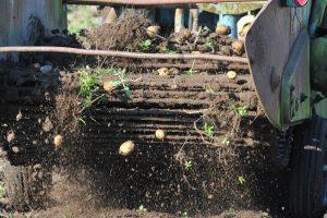 Ieško būdų, kaip padėti nuo liūčių nukentėjusiems žemdirbiams