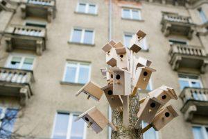 Sušvelninti reikalavimai prašantiems socialinio būsto