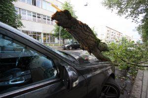 Audringa vasara lietuviams pridarė nemažai nuostolių