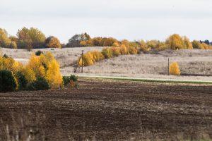 Žemės mokesčio dar nesumokėjo 30 proc. gyventojų ir įmonių