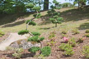 Vilniuje tarp daugiaaukščių šeima įkūrė japonišką sodą