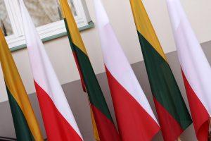 Tarp prioritetinių Seimo diplomatijos krypčių nėra Lenkijos