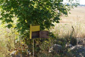 Netvarkingų pašto dėžučių laiškai nebepasieks