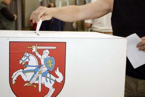 Referendumą dėl dvigubos pilietybės planuojama surengti gegužės 12-ąją
