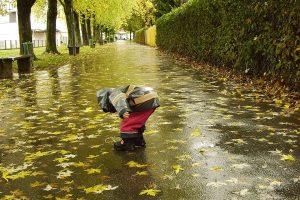 Savaitės orai: šilumą išstums drėgmė ir vėjas