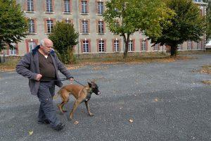 Prancūzijoje šunys mokosi užuosti vėžį
