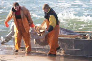 Žvejams kurpiamas naujas mokestis