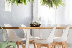 Paparčiai namuose – puikus sprendimas ne tik nuolat pavargusiems
