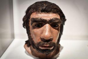 Mokslininkai: neandertaliečių nosys buvo geresnės