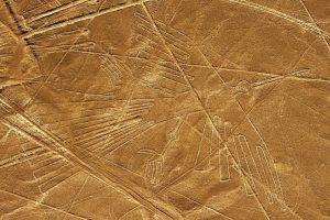 Peru sunkvežimis apgadino senovinius Naskos piešinius