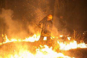 Miesteliuose ir kaimuose gaisruose žūsta dukart daugiau gyventojų nei mieste