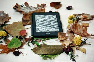 Lietuviai norėtų skaityti daugiau elektroninių knygų, bet jų neranda