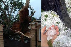 Škvalas Lietuvoje vartė medžius, plėšė stogus: be elektros buvo tūkstančiai žmonių