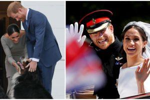 Princo Harry ir M. Markle šeimoje – naujas narys