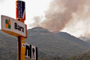 Miško gaisrai Ispanijos rytuose: evakuota apie 3 tūkstančiai žmonių