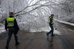 Policijos pareigūnai darbavosi kirvukais