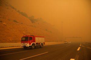 Didėja miško gaisrų Atėnuose aukų skaičius – pranešama apie 91