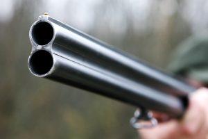 Panevėžiečio namuose rasti nelegalūs ginklai