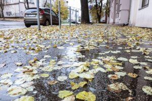 Ilgai džiaugtis neteko: grįžta lietingi orai
