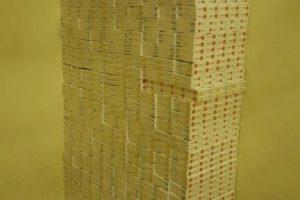Išmetę 3 tūkst. pakelių cigarečių kontrabandininkai pasislėpė miške