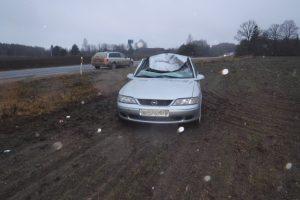 Automobiliui susidūrus su briedžiu nukentėjo du jaunuoliai