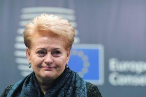 Prezidentė ruošiasi į Kijevą