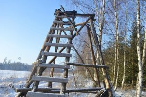 Medžiotojų bokštelius sudeginę brakonieriai – pareigūnų rankose