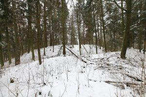 Veprių piliakalnis pateko į kultūros vertybių sąrašą