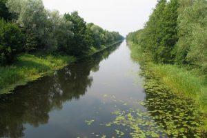 Vilhelmo kanale rastas vyro lavonas