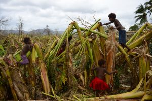 Ties Vanuatu įvyko žemės drebėjimas