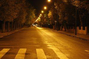 I. Kanto gatvėje bus persodinami medžiai ir remontuojami šaligatviai