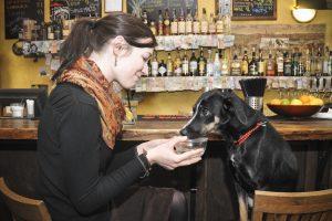 Kavinėje – nemalonumai dėl šuniuko