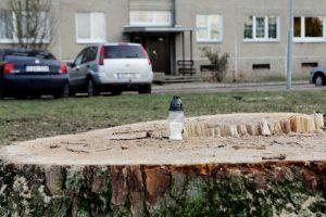 Gyventojai ant medžių kelmų uždegė žvakes