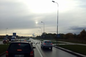 Gulbės sustabdė eismą Šiaurės prospekte