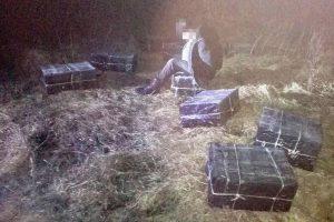 Belgų aviganis susekė cigarečių kontrabandininką