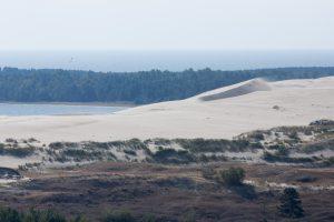 Aplinkosaugininkai gelbės nykstančias Kuršių nerijos kopas