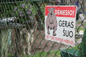 Rajone populiarėja saugios kaimynystės grupės