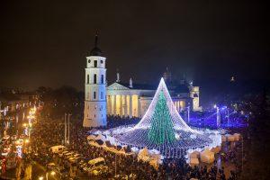 Gražiausios eglės rinkimuose Kaunas vėl pralaimėjo Vilniui