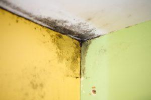 Vandentiekiu privalo rūpintis būstų savininkai