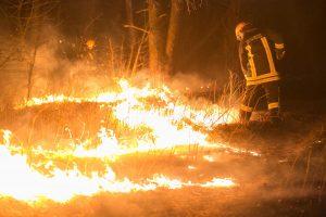 Per parą Lietuvoje kilo per 130 gaisrų