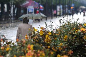 Lietuvoje išliks šilta, nors ir lietinga
