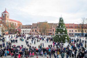 Kaip atrodys Kauno kalėdinė eglutė – dar neaišku