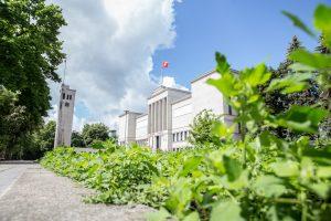 Prie Karo muziejaus sužėlė piktžolės