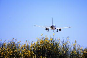 Paskelbtos geriausios pasaulio oro linijos