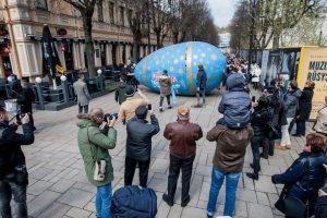 Kauno gatvėmis riedėjo 300 kg svorio margutis