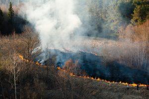 Du trečdaliai savaitgalio gaisrų – degusios pievos