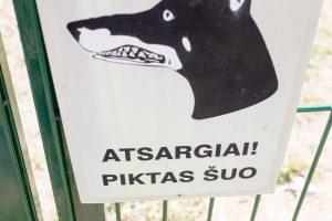 Alytaus rajone šuo smarkiai apkandžiojo vaikui veidą